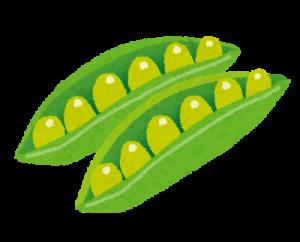 夏バテ防止に豆類