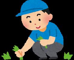 除草剤の使い方