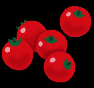 夏バテ防止にトマト