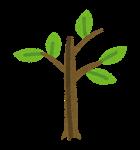 除草剤の庭木への影響