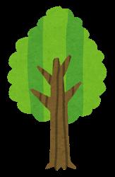 除草剤の樹木への影響