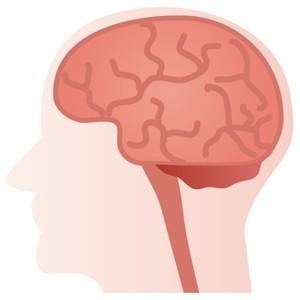 疲れやすい病気は脳が原因