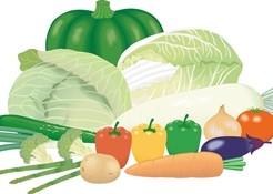 熱中症対策の食べ物
