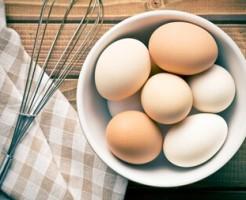 白い卵と茶色(赤い)卵の違い